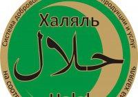 Кыргызстан изучает опыт Татарстана в индустрии халяль