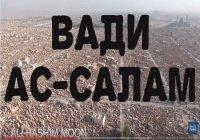 Вы не поверите своим глазам: Вади ас-Салам - самое большое кладбище в мире