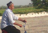 500 км на велосипеде в память о Каримове проедет узбекский пенсионер