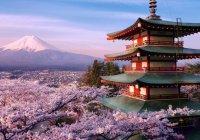 Скандал на конкурсе красоты в Японии