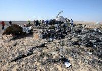 Эксперты установили, куда террористы заложили бомбу в самолете, рухнувшем на Синае
