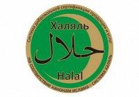 Специалисты Комитета «Халяль» ответили на вопросы радиослушателей