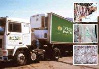 10 тысяч саудовских семей получили жертвенное мясо