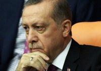 Эксперт: заявлением по Крыму Эрдоган может осложнить отношения с РФ