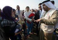 ОАЭ примут 15 тысяч сирийских беженцев