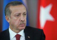 Эксперт: цель Эрдогана в Сирии – не борьба с ИГИЛ