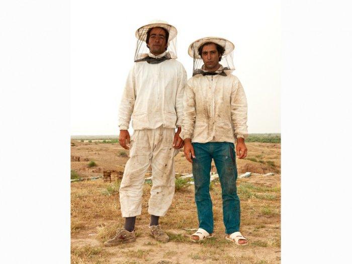Иранские пчеловоды. Медовая индустрия в стране развивается бешеными темпами
