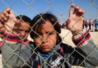 В Германии – больше 300 тысяч детей-беженцев