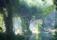 Потрясающий дождевой лес вырос посреди дубайской пустыни