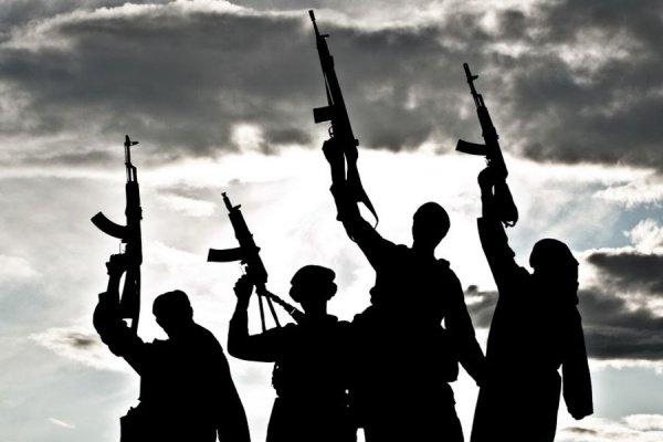 Иностранные наемники ИГИЛ возвращаются на родину.