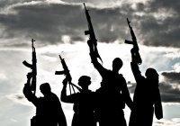 Эксперт: по миру разбредутся 10 тысяч боевиков ИГИЛ