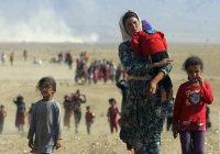 В 2016 году число беженцев перевалило за 21 млн человек