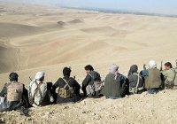 В помощь Афганистану мир собрал $15 млрд