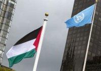 Палестина рассмотрит вопрос членства в ООН