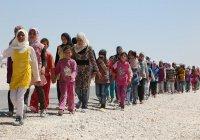 За 5 лет Сирию покинули 6,5 млн человек