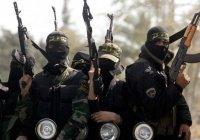 Большинство джихадистов в Европе – бывшие преступники