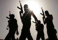 СМИ: ИГИЛ сменило тактику