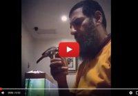 Мусульманин и его ручная птица стали героями соцсетей
