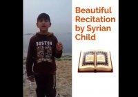 Потрясающе красивое чтение Корана маленьким сирийцем