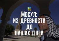 Мосул: как выглядел город, за который сегодня разворачивается грандиозное сражение с ИГ
