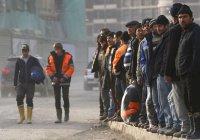 В России могут амнистировать 3 млн нелегальных мигрантов