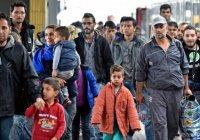 СМИ: из Латвии «сбежали» все сирийские беженцы