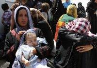 Боевики ИГИЛ огородили Мосул живым щитом из 550 семей