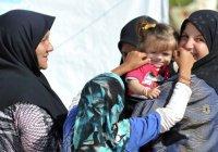 Сирийский беженец получил в Германии пособий на 360 тысяч евро