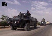 В Мосул из Сирии для противостояния штурму прибыли около тысячи боевиков ИГИЛ
