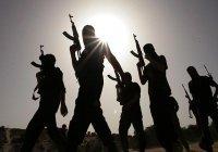 """Эксперты: из Сирии и Ирака ИГИЛ """"переберется"""" в Юго-Восточную Азию"""