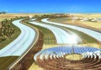 Крупнейший рукотворный лес появится в катарской пустыне (Фото)