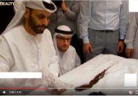 Уникальнейшая реликвия Пророка Мухаммада (ﷺ), обнаруженная в Йемене