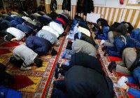 Сирийские беженцы обеспокоены нравами в мечетях Германии