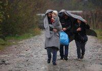 В Мурманской области – наплыв беженцев с Ближнего Востока