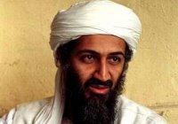 Брат Усамы бен Ладена зарабатывает на аренде элитной недвижимости в Шотландии