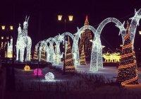 В Казани появится самый длинный в Европе каток