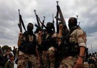 Роскомнадзор разъяснил порядок употребления в СМИ названия ИГИЛ
