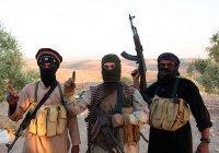 МВД Бельгии: в Европу вернутся до 5 тысяч боевиков ИГИЛ