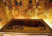 В Египте нашли уникальную мумию