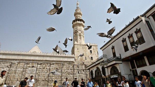 В государственной думе загорелись мыслью побратимства столицы иДамаска
