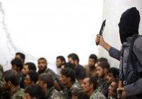 Боевики ИГИЛ казнили 300 экс-полицейских