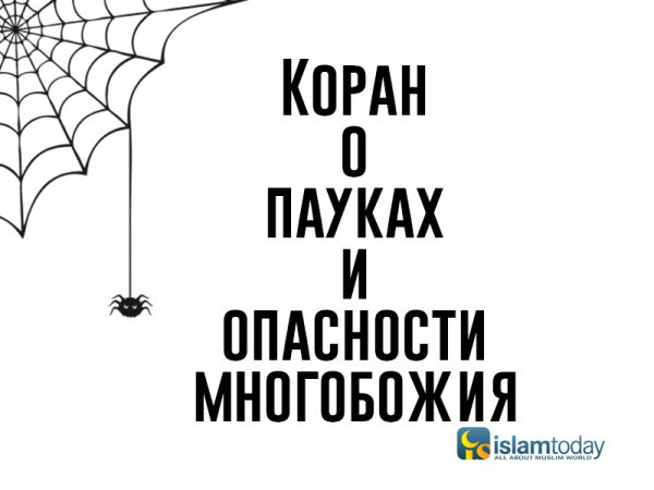Коран о пауках и... опасности многобожия