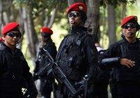 Совместный антитеррористический отряд создадут Индонезия, Малайзия и Филиппины