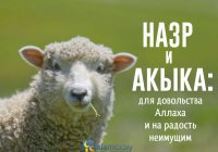 Назр и Акыка: для довольства Аллаха и на радость неимущим
