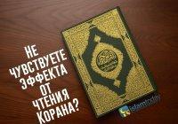 Не чувствуете эффекта от чтения Корана? Следуйте этим 6 советам