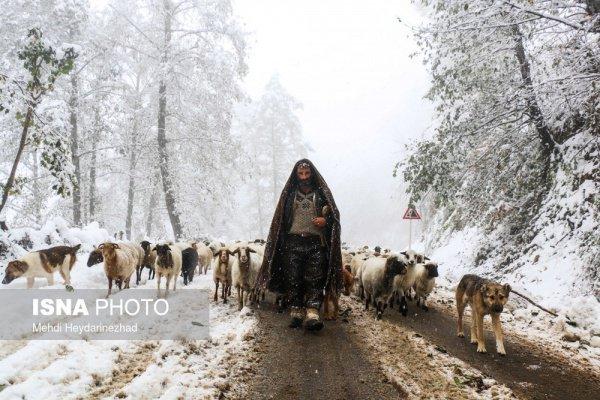 Снег окутал северные провинции Ирана (Фото)