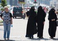 В Голландии запустили процесс запрета никаба