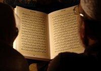 Эксперт: победить экстремизм может только интеллектуальный ислам