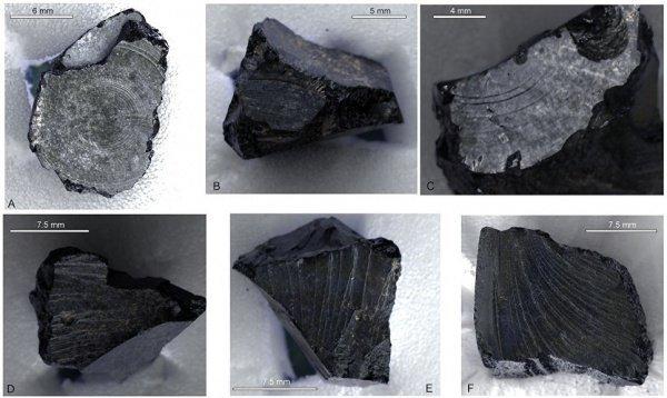 Кусок битума с Ближнего Востока, завезенный в Англию в 7 веке нашей эры © Фото: Burger et al (2016)