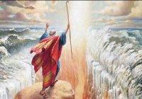 Придя в себя, он сказал: «Я раскаиваюсь перед Тобой, и я — первый из верующих»